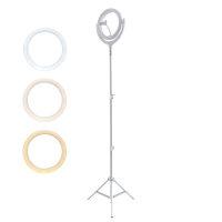 Selfie Ring Light LoomiPod Floor Lamp white